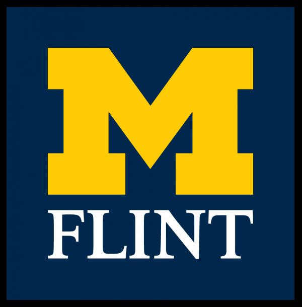 M Flint logo